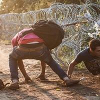 Népindulás − Migráció és mi VI.