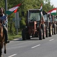 Dologtalan demonstrálók – Ilyen ország pedig nincs CCLXXVIII.