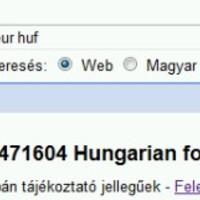 A Google-nél 218 Ft az euró
