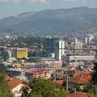 Szarajevói sündisznó