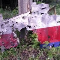 Szakértő: Rakéta okozhatta a maláj gép tragédiáját
