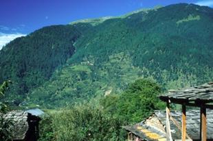Hippik és tehenek a Himalájában – Incredible India III.