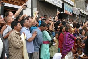 Bringa, láma, szamarak – Incredible India VII.