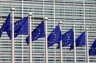 Az EU, a parlament és a megélhetési jogalkotás