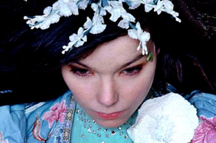 Björk, a nemzeti zöld kapitalista