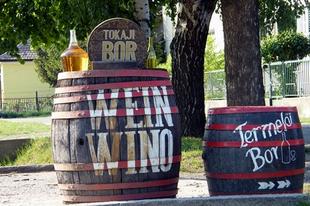 Tokaj szőlő- és egyéb vesszei 1.
