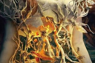 Ott van a fejed felett a horgonyhelyed – az év magyar fantasy-regényéről
