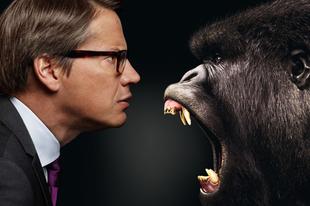 Komcsik, megahibások, állatok - Svédország választ