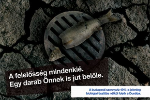 Demszky és a döglötthal-szag
