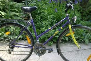 Egy Darwin-díjas kerékpártolvaj