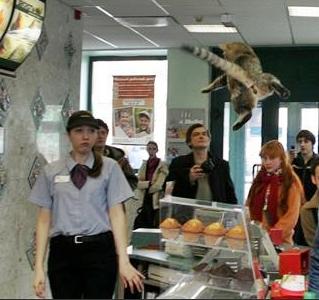 pussy cat.jpg