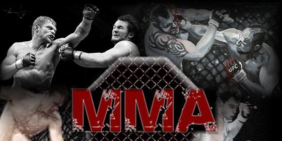 MMA_kulturharc.png