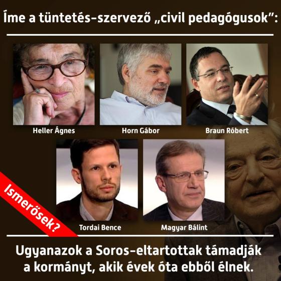 tuntetes-szervezok.png