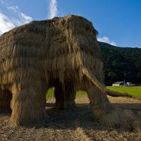 A szalma mamut kihalása