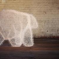 Egy komplex medve