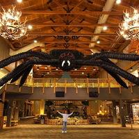 A világ legnagyobb pókja