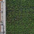 Elkészült London legnagyobb függőleges kertje