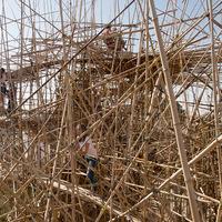 Az élet olyan, mint egy bambuszlabirintus