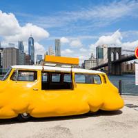 Ingyen hot dogot plus size autóból?