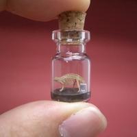Dinoszauruszok a palackban