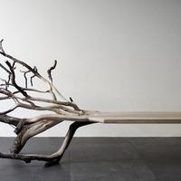 Kidőlt fa-pad Benjamin Graindorgetól