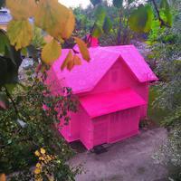 Rózsaszínű házzal a lelki épségért