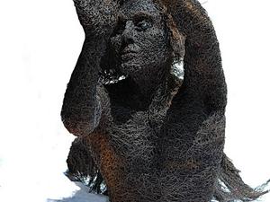 Mattia Trotta -  Drót Art