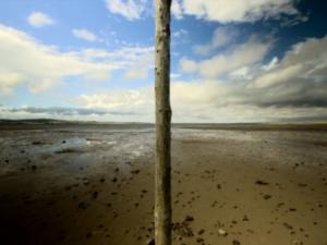 Egy sziget, egy Canon és némi tehetség - Euan Preston