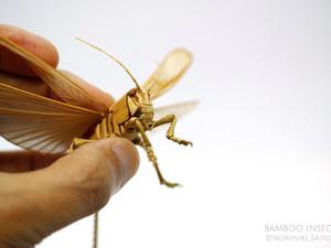Döbbenetes szobrok bambuszból