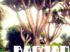 Tenerife: télből a langymelegbe 2.rész – Bagman #5