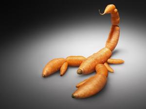 Te tudod mit eszel...? - Greenpeace kampány a skorpiórépa és társai ellen...