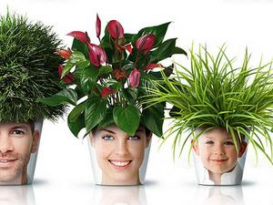 Alternatív virágcserepek