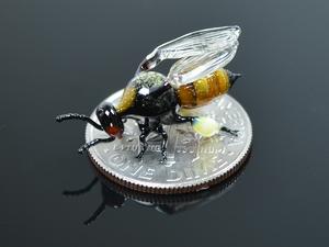 Lenyűgöző üveg rovarok