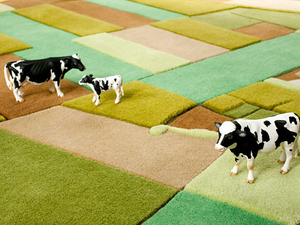 Tarka-barka - LandCarpet a piece of nature in your room.