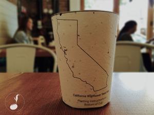"""A világ első """"elültethető"""" kávés pohara"""