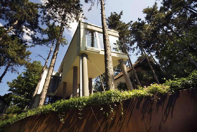 Treehouse gólyalábakon, az akarattyai fenyvesekben - Munkacsoport.Net
