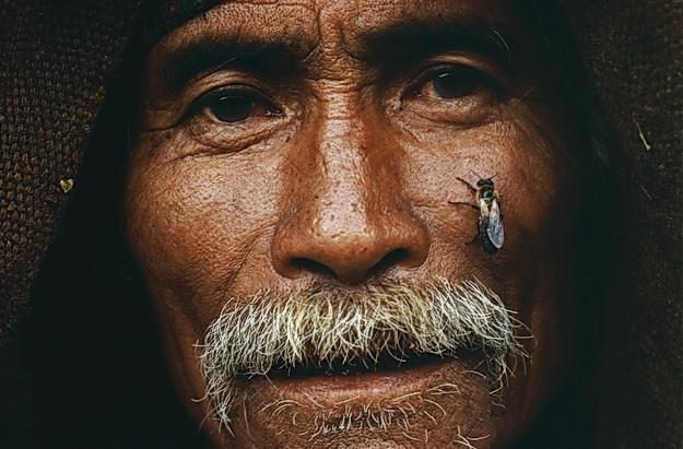 Elképesztő mézvadászat Nepálból - Honey Hunters of Nepal