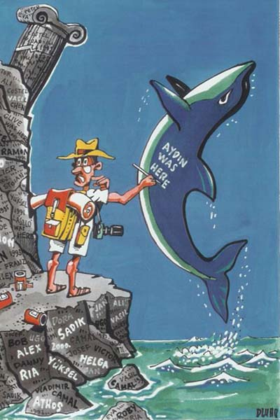 delfinturizmus.jpg