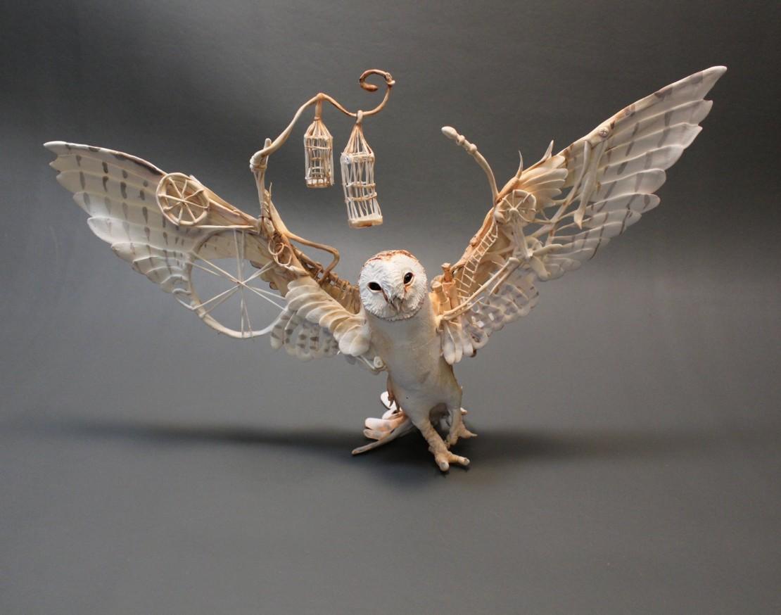 Barn Owl with Mechanics.jpg