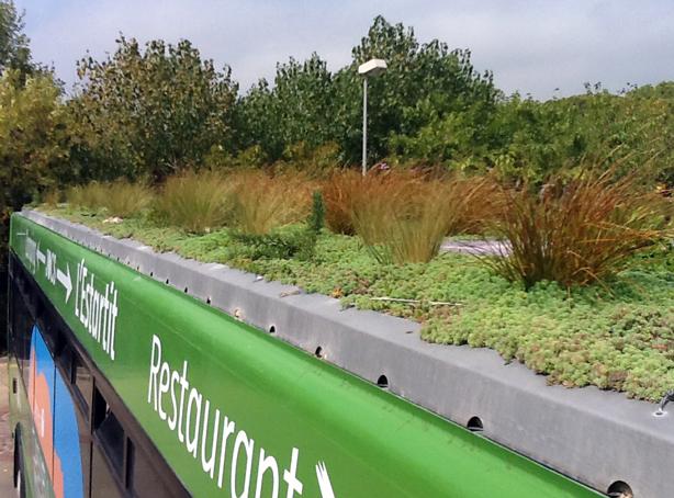 phytokinetic-green-roof-bustop-urbangardensweb.jpg