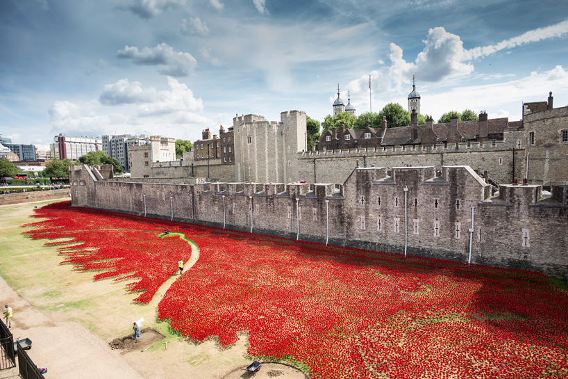 ceramic-poppies01.jpg