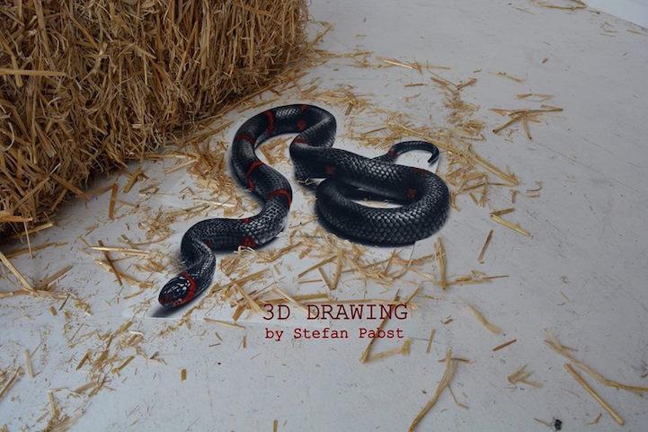 snake08.jpg