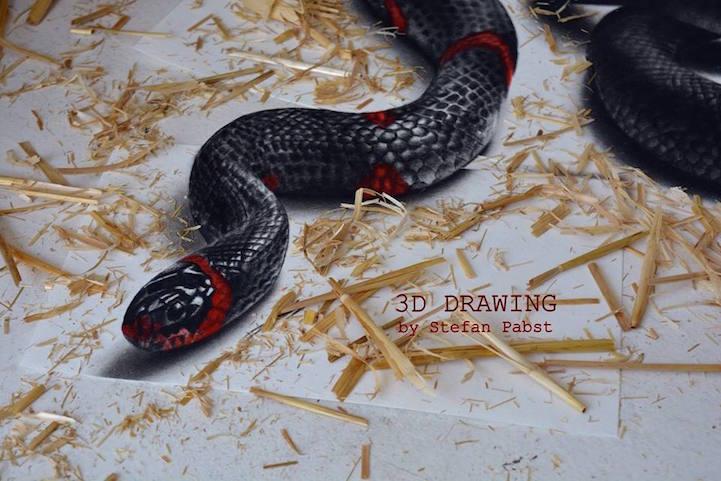 snake09.jpg