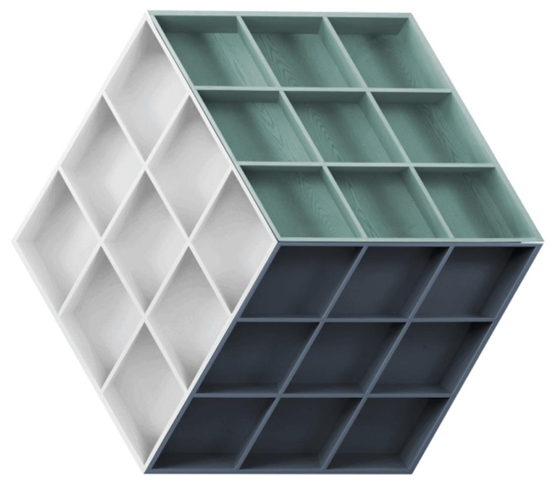 rubika-bookcase03.jpg