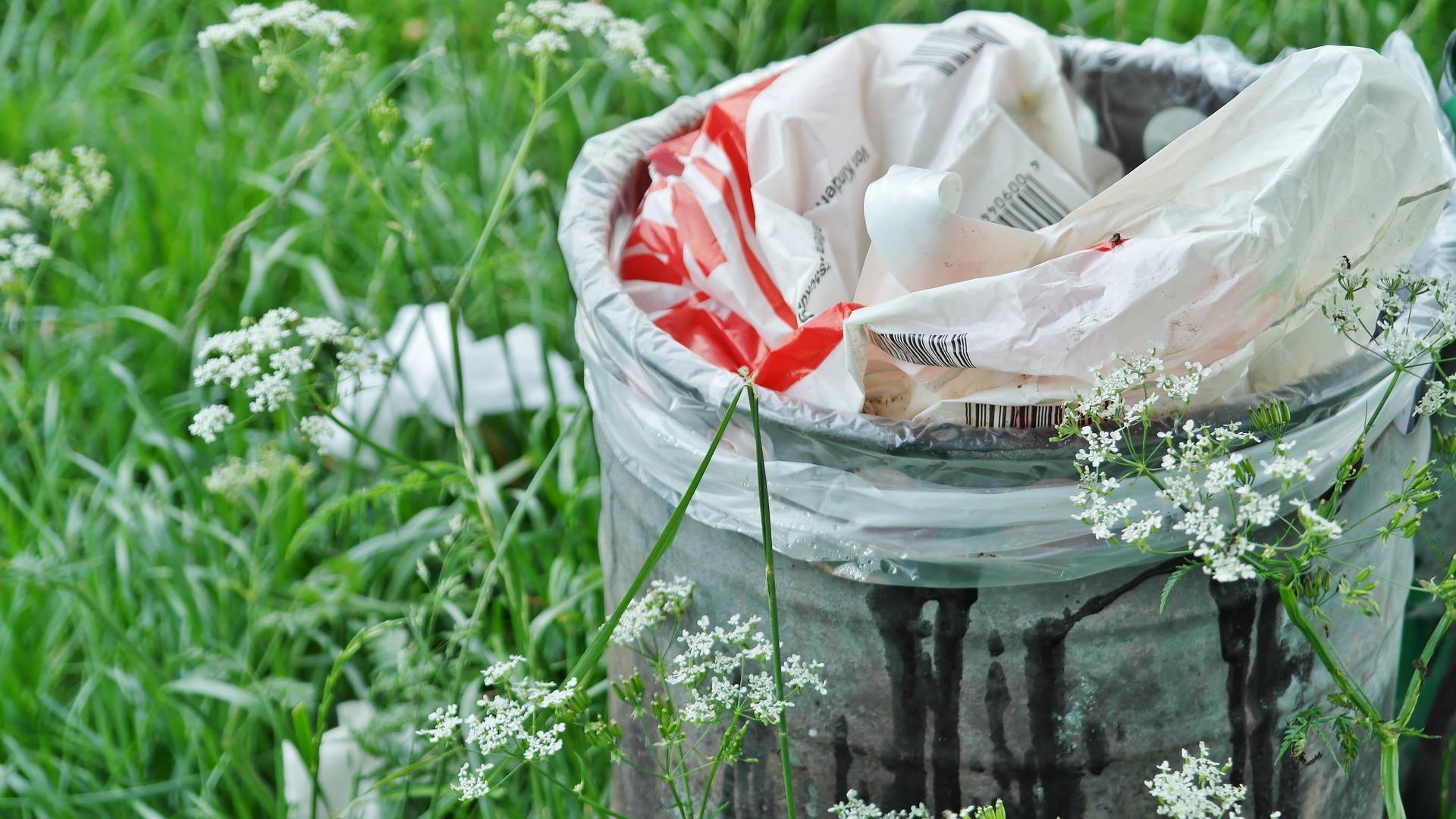 garbage-can-1423840_1920.jpg