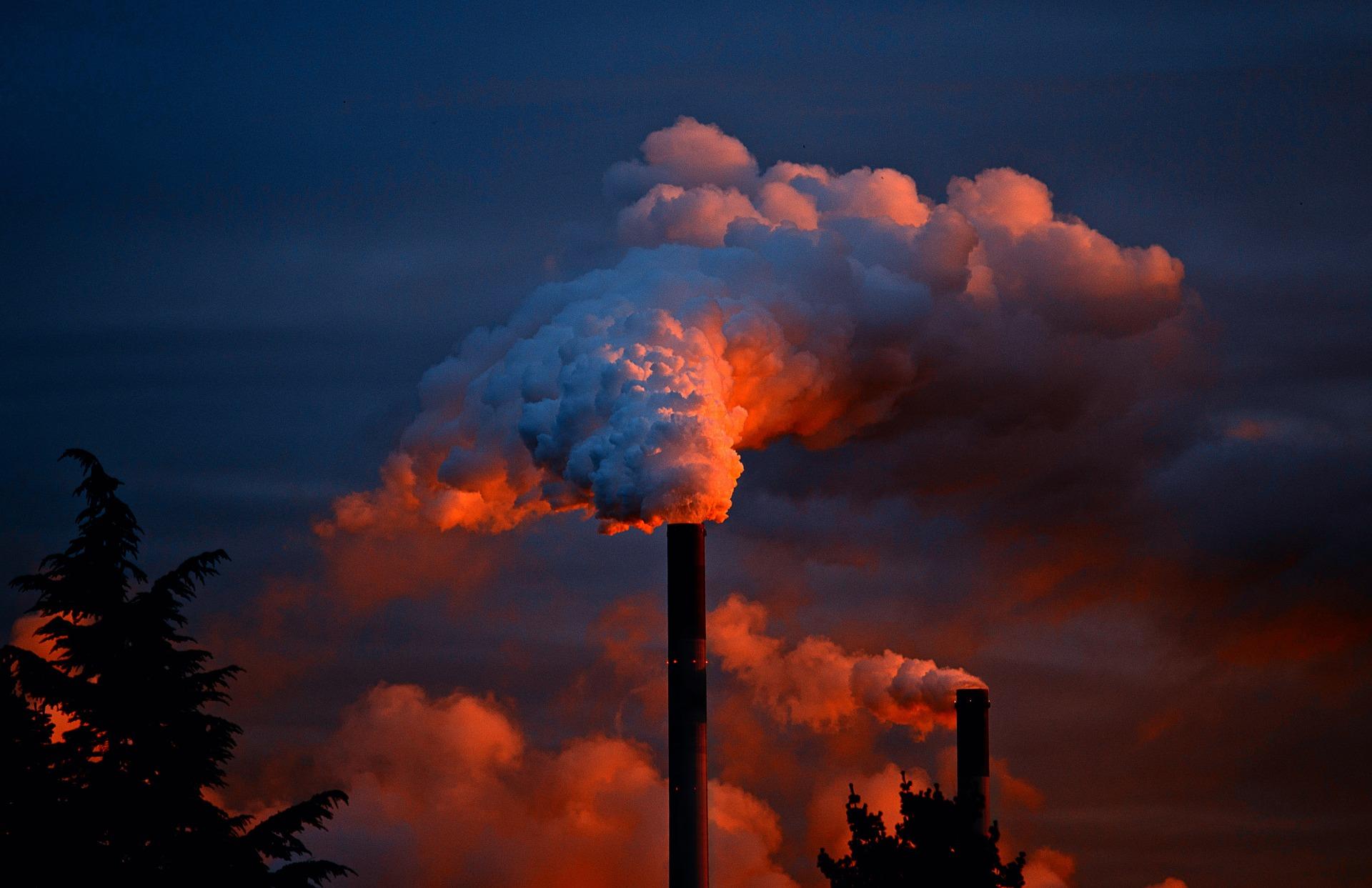 17 életmentő környezetvédelmi tipp /X/