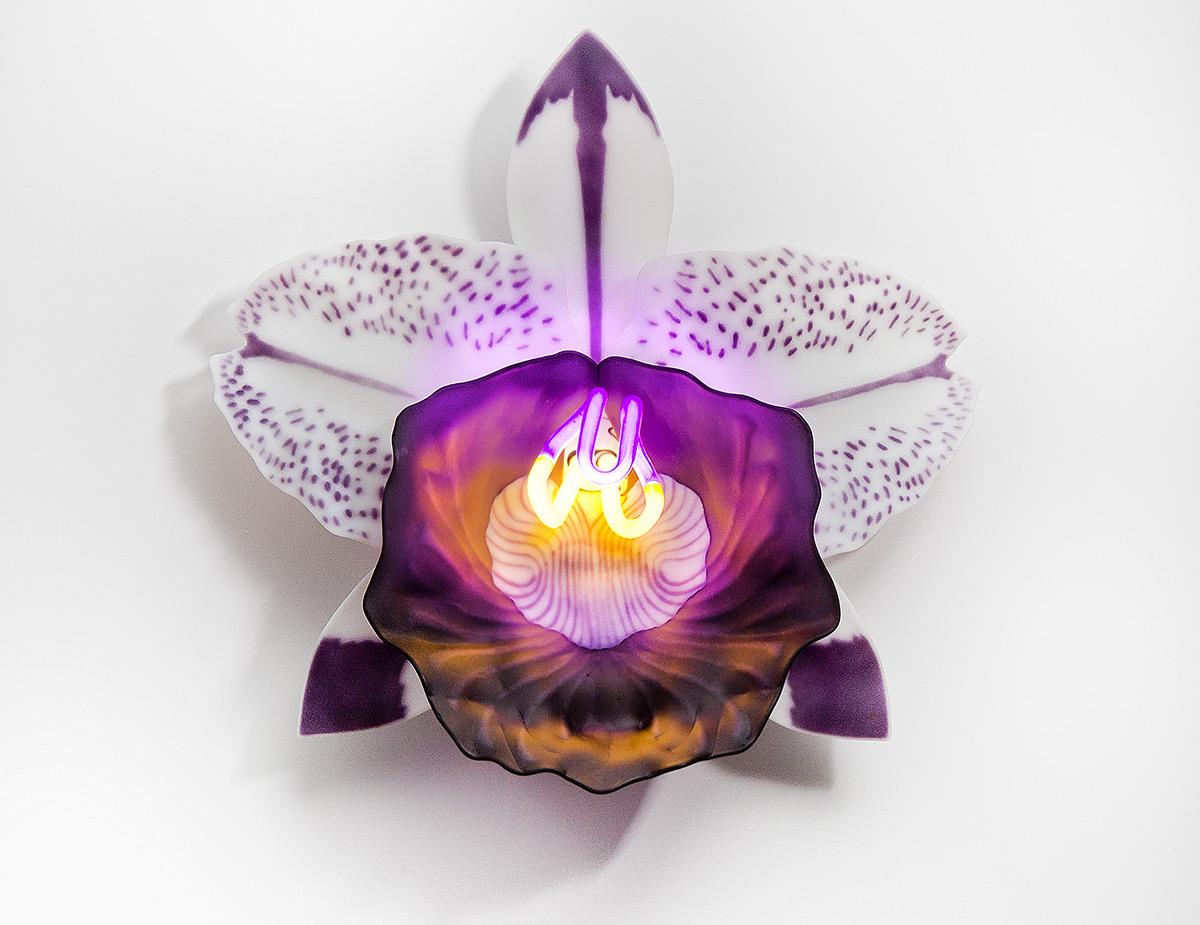 Érzéki orchidealámpák