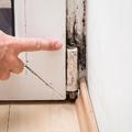 3 penészölő módszer, ami nélkül nincs biztonságban az otthona
