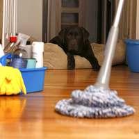9 takarítási tipp, és másként csillog a lakás