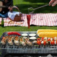 4 féle grillsütő – de melyik illik  leginkább Önhöz?